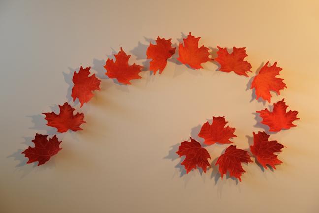 Leaf Swirl by Tracey Lawko