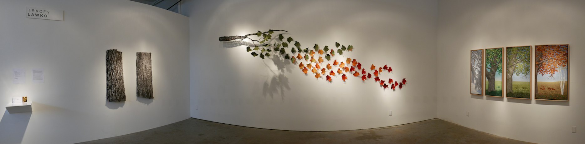 Change Enables Growth Installation by Tracey Lawko at David Kaye Gallery
